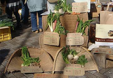 新鮮な産地直送野菜