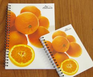 O'BON リングノート オレンジ