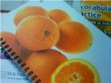 O'BONフルーツリングノート オレンジ.jpg
